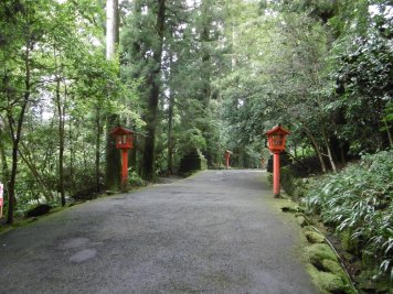 Path to Hakone Shrine