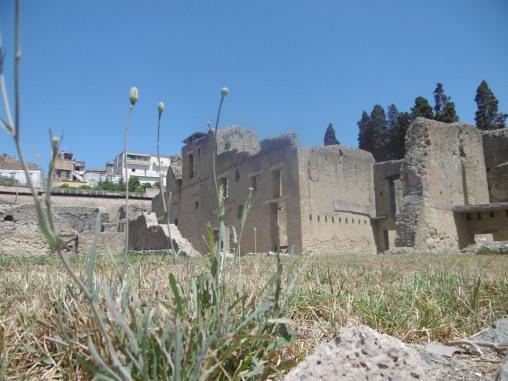 Ruins at Herculaneum